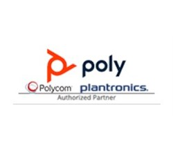 Polycom Wireless Phones Polycom 4870 17821 112